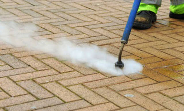 gum removal in troy